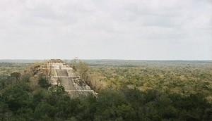 Calakmul.templo