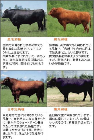 和牛の品種